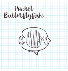 colorless funny cartoon butterflyfish vector image