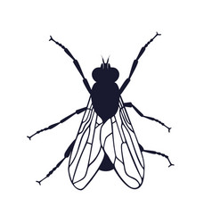 fly sign vector image