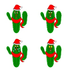 Funny christmas cacti on a whte background vector