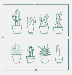 green cactus in a pot vector image