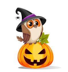 Happy halloween cute owl sitting on scary pumpkin vector