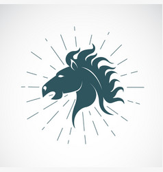 Horse head on white background animal vector