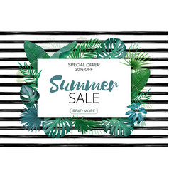 summer sale advertising template tropic leaves vector image