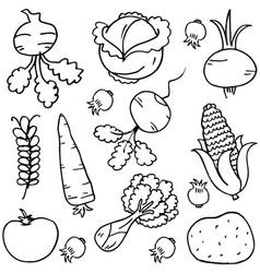 vegetables doodles vector image