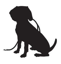 beagle silhouette leash vector image vector image