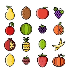 Fresh fruit icons set flat design line art vector image