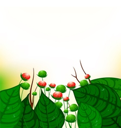 Green leaves with flowers background vector image