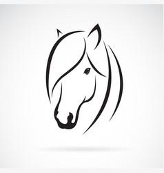 horse head design on white background animal vector image