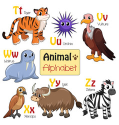 alphabet animals from t to z vector image
