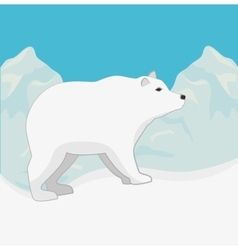 Arctic bear animal vector