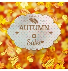 Autumn Sale template EPS 10 vector
