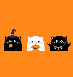 cat set holding sweet candy pumpkin bunting flag vector image