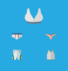 Flat icon clothes set of lingerie underclothes vector
