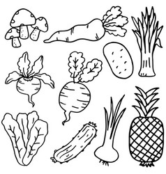 Hand draw doodle vegetable and fruit vector