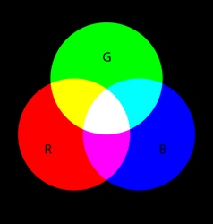 Rgb colors vector