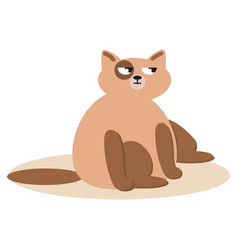 sitting cute cats cat brown cat vector image