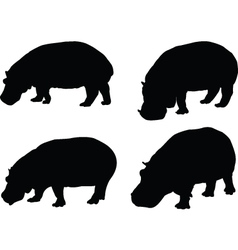 hippo collection - vector image