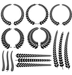 Laurel wreath set isolated vector