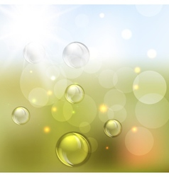 Summer abstract background with Lights vector image vector image