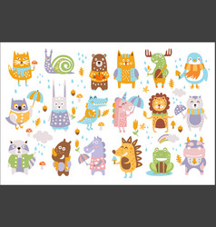 Animal woodland autumn set cartoon of cute vector