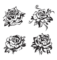black rose set vector image