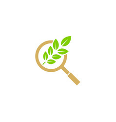 eco green leaf search logo vector image
