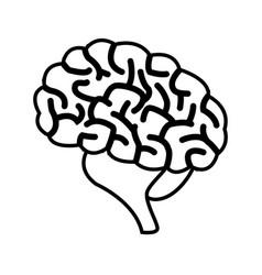 Human brain symbol vector
