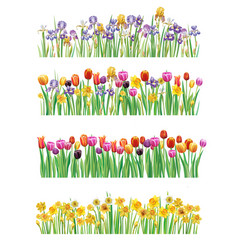 Set of borders with multicolor spring flowers vector