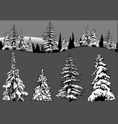 Snowy coniferous tree set vector
