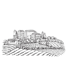Village landscape with field and house vector image
