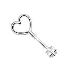 vintage glossy antique silver door key in heart vector image