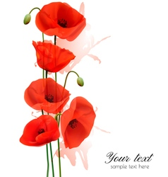 Nature summer background with red poppies vector image vector image