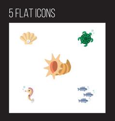 Flat icon marine set conch tortoise seashell vector
