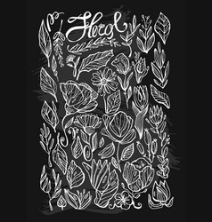 hand drawn lined indoor floral plants line vector image
