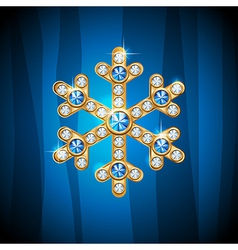 jewel snow vector image