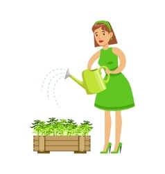 Woman Watering Sprouts In Crate Contributing vector