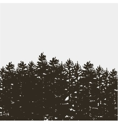 Black pine tree forest isolated on white grey vector
