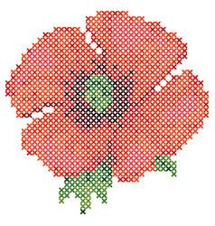 cross stitch red poppy vector image