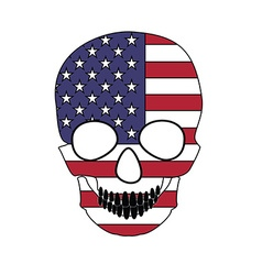 Skull flag vector image vector image