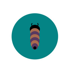 Stylish icon in color circle insect caterpillar vector
