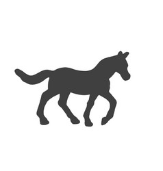 black silhouette of horse isolated on white vector image