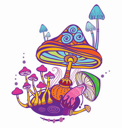 Group of decorative mushrooms vector