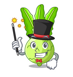 Magician fresh cabbage kohlrabi on the mascot vector