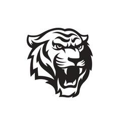roaring tiger logo design vector image