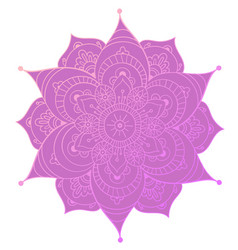 round mandala on white isolated background vector image