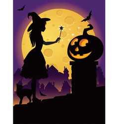the little witch on roof vector image