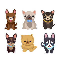 dogs and puppies set poster vector image vector image