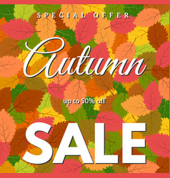 background with autumn leaves autumn sale vector image