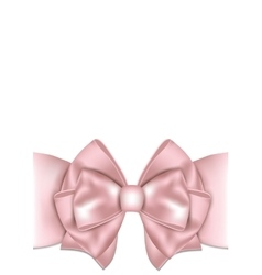 Beautiful pink bow with ribbon vector image