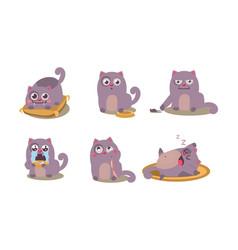 Cute grey cat set funny animal character vector